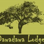 Dawadawa Lodge